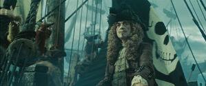 Capitaine Chevalle