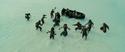 Isla Cruces duel 23