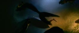 Mermaids Swimming OST