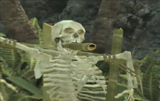 Skeleton AWE game