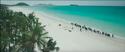 DMTNT beach view
