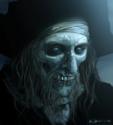 Barbossa art