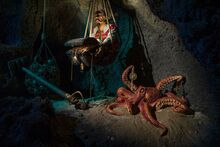 Dead Man's Cove Octopus 2018