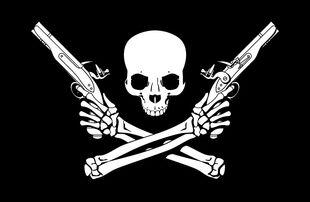 Harlock's pirate flag