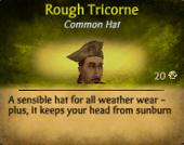 Rough Tricorne