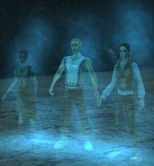 Wayward ghosts