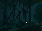 Hollowed Woods
