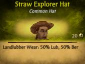 Straw Explorer Hat