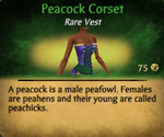 PeacockCorset