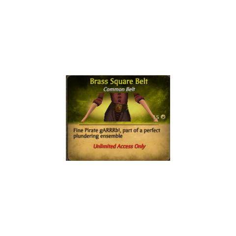 Brown Brass Square Belt