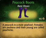Peacock boots