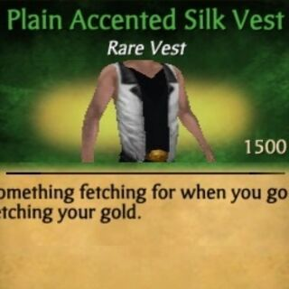Accented Silk Vest