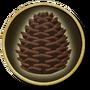 Ship-upgrade-materials-pine