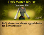 F Dark Water Blouse