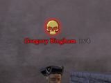 Gregory Bingham