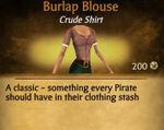 F Burlap Blouse