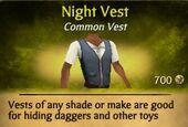 Night Vest