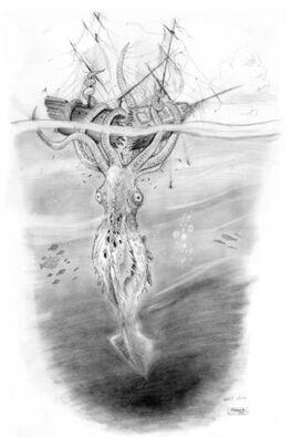KrakenConcept