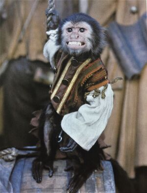 Jack(scimmia)