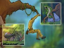 Jungleadventure-e1344714433958