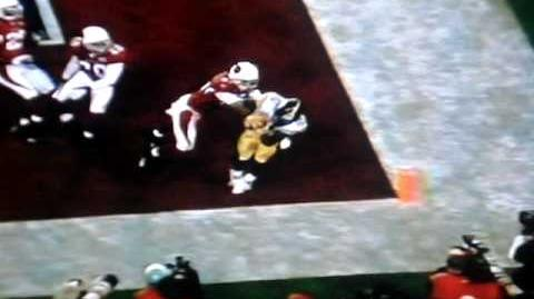 Amazing Touchdown by Santonio Holmes! Super Bowl 43 XLIII 2009 Steelers 27 Cardinals 23