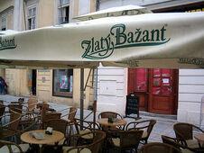Zlatý Bažant - pub