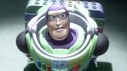 Buzz0037