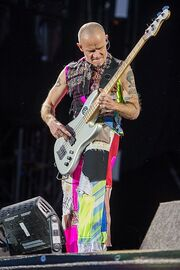 2016 RiP Red Hot Chili Peppers - Michael Flea Balzary - by 2eight - DSC0041