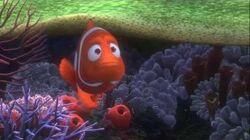 Gdzie jest Nemo? - polski zwiastun 2