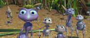 Bugs-life-disneyscreencaps.com-666