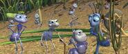 Bugs-life-disneyscreencaps.com-629