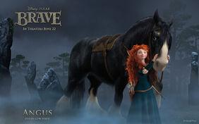 Brave-Angus-Wallpaper