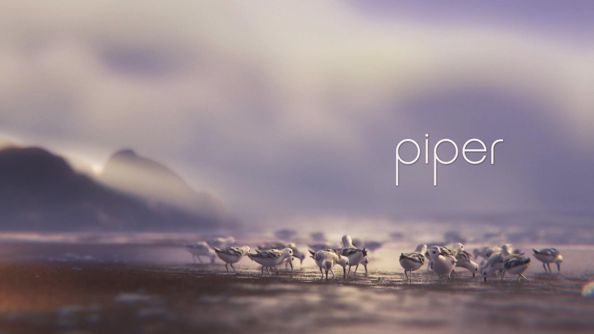 piper pixar wiki fandom powered by wikia