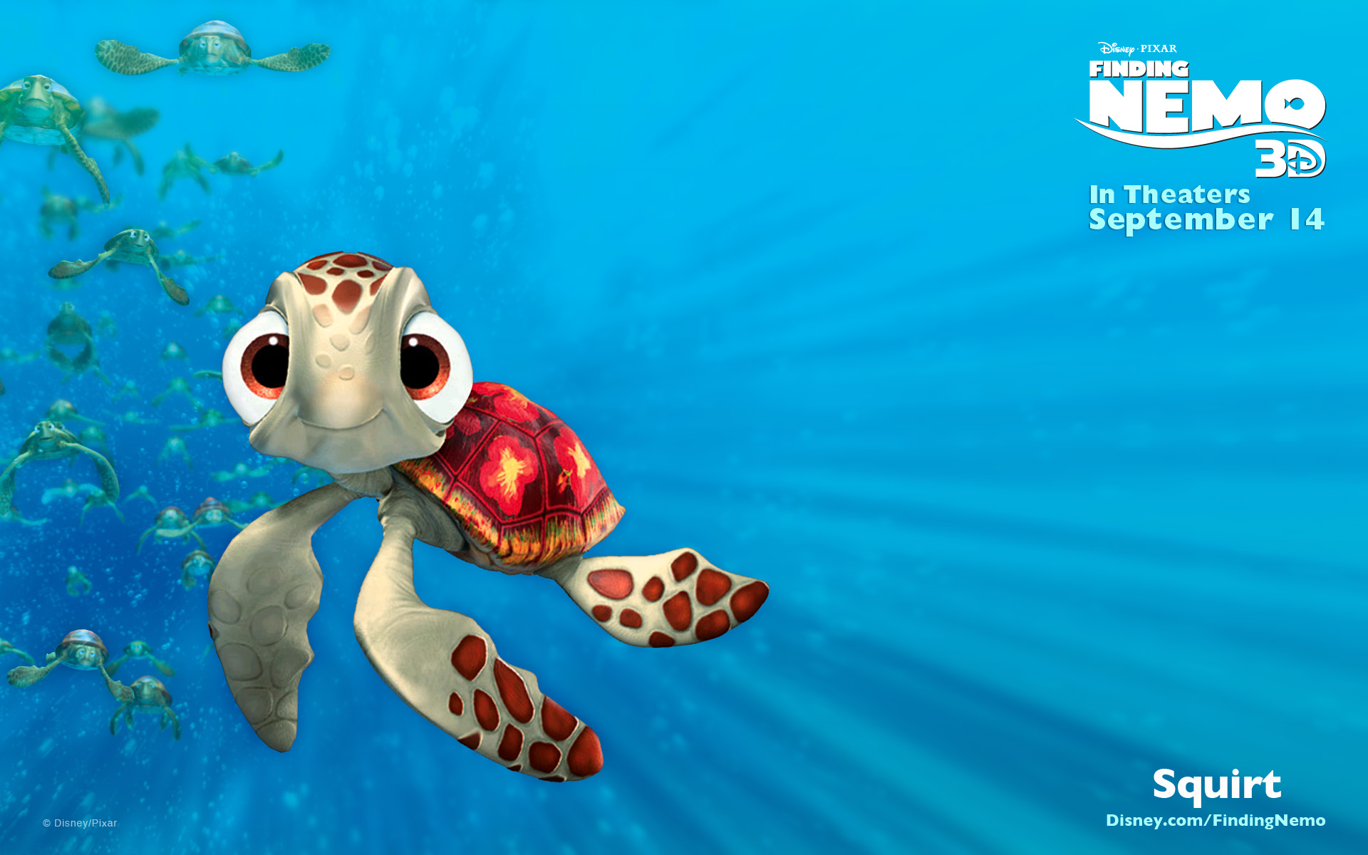 Image result for squirt finding nemo
