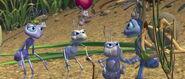Bugs-life-disneyscreencaps.com-642