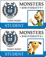 Terri and Terry's ID cards