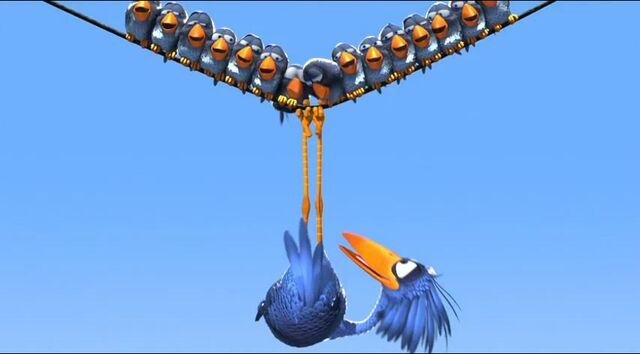 File:For the Birds 005.jpg