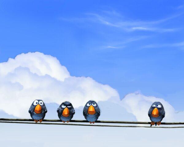 File:For the Birds 006.jpg