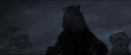 Brave-Bear3