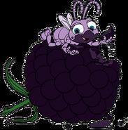 Dot-blackberry