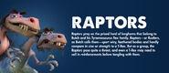 Raptor Information