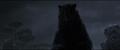 Brave-Bear2.png