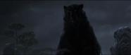 Brave-Bear2