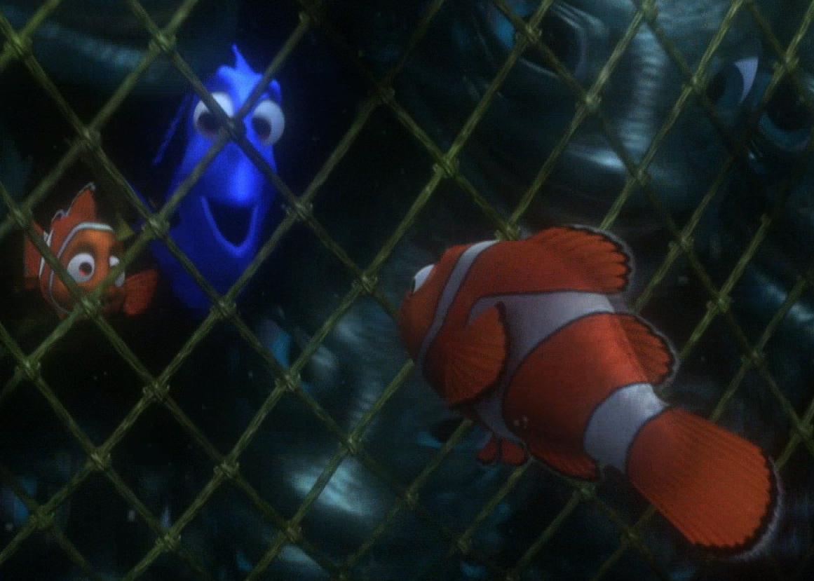 Nemo Meets Dory MarlinNemoandDory