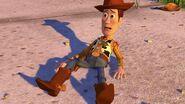 Woody 003