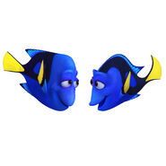 Dory's Parents FD