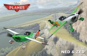 Planes nedzed rollout final