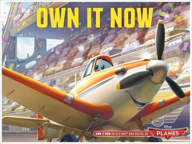 File:Own It Now.jpg