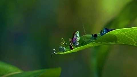 A Bug's Life (1998) HD teaser