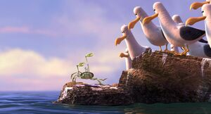 Crab-Seagulls